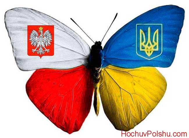 отзывы о работе в Польше украинцев 2019