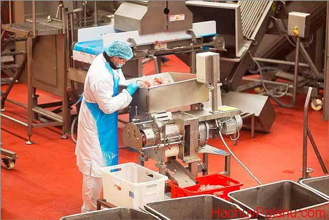 работа на мясной ферме