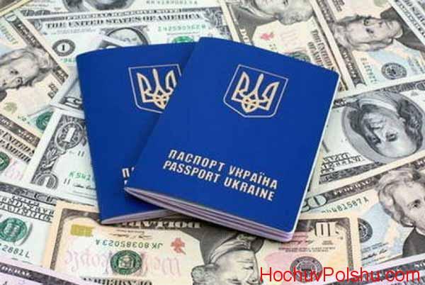 паспорт и доллары