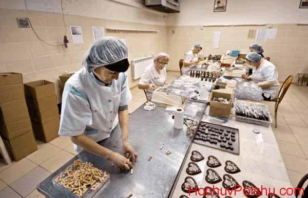 работа на фабрике сладостей