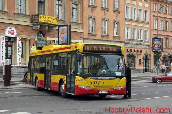 Легальная работа в Польше водителем автобуса
