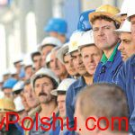 Польский рынок трудоустройства