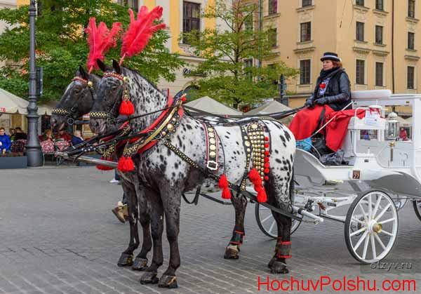 Как работают поляки в праздники?