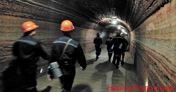 Работа на шахте в Польше вакансии в 2020 году