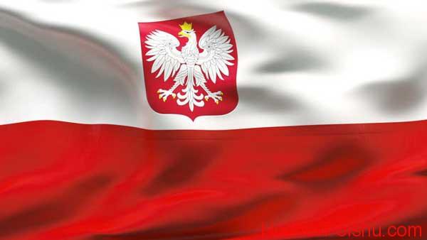 в Польшу