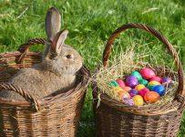 Світле та добре свято Паски відзначають у кожному домі